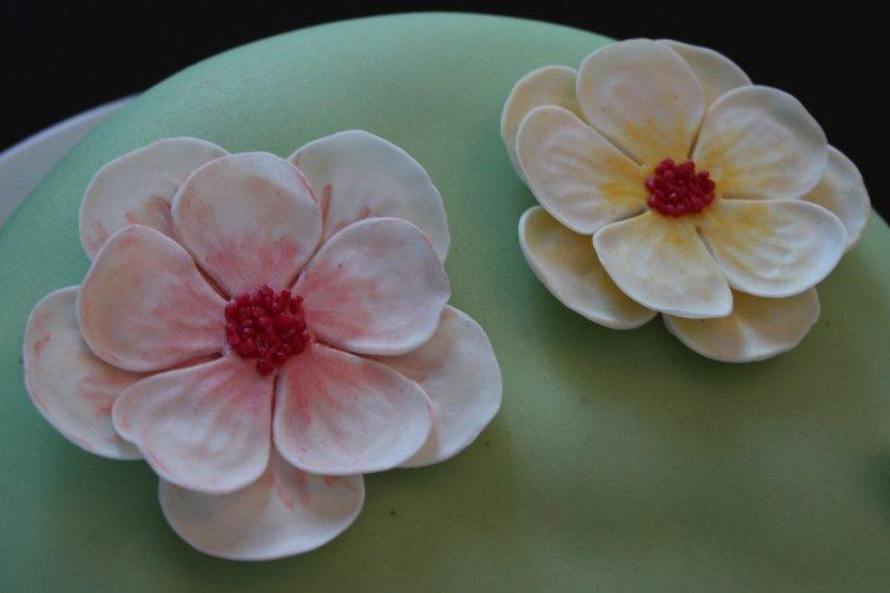 Närbild blommor