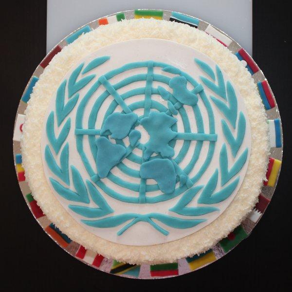 FN-tårta uppifrån