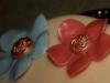 Närbild aprikosrosa blomma